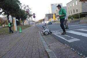 crossing_road